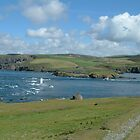 Calf of Man 3 by Garrington