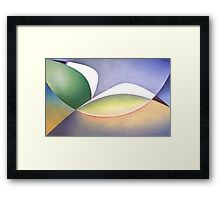 Seabird in Flight Framed Print