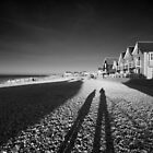 With My Shadow by Andrew Jackson