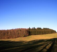 Open field in the Ardennes by Wesley Guijt