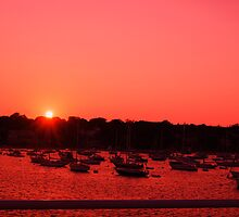 Martha'a Vineyard at sunset by dbcarolinagirl