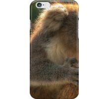 Young Koala iPhone Case/Skin