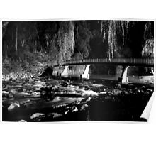 The River BW Poster