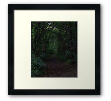 HDR Composite - A Dark and Viney Forest Path Framed Print