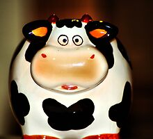 Makes you wonder....whats happening behind the cow by MichelleOkane