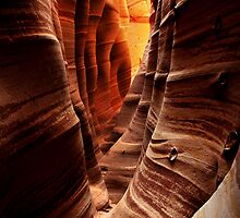 Zebra Slot Canyon by Nolan Nitschke