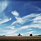 Australian Countryside by Paul Carson