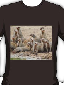 Banded Mongoose - Band of Brothers and Sisters T-Shirt