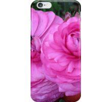 Ranunculus, Toowoomba Garden Qld Australia iPhone Case/Skin
