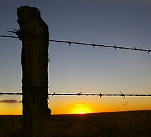 Texas Sunset by Pamela Maxwell