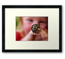 WOW!! A Paper Kite Landed On My Hand! - Paper Kite Butterfly - Dunedin NZ Framed Print