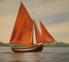 traditional irish fishing boat by cathal  o malley