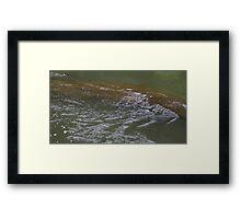 HDR Composite - River over Rock Framed Print