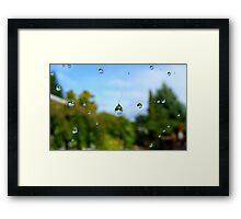 Floating Worlds! - Drops on Webs - NZ Framed Print