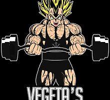 Vegata's GYM by badboy7