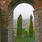 Cypress trees and arch in Todi, Italy by al holliday