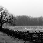 Wheatfield Road scene, Gettysburg Battlefield by al holliday