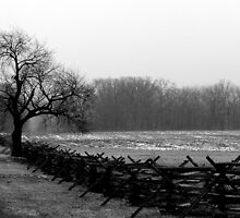 Wheatfield Road scene, Gettysburg Battlefield by al holliday
