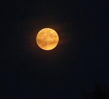 Dark Moon by 405tearyeyes