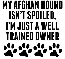 Well Trained Afghan Hound Owner by kwg2200