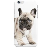 Walkabout iPhone Case/Skin