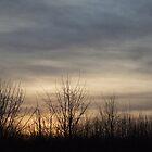skies2 by wespenspinne