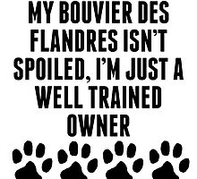 Well Trained Bouvier des Flandres Owner by kwg2200