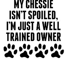 Well Trained Chessie Owner by kwg2200