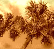 Palm Trees by traceh38