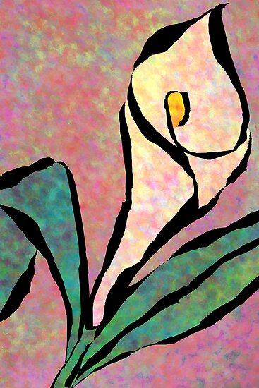 Calla Lily by Ginny Schmidt