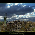 Old Mexico Way by StarshinePhoto