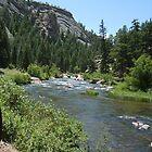 11 Mile Canyon by Lori Durocher
