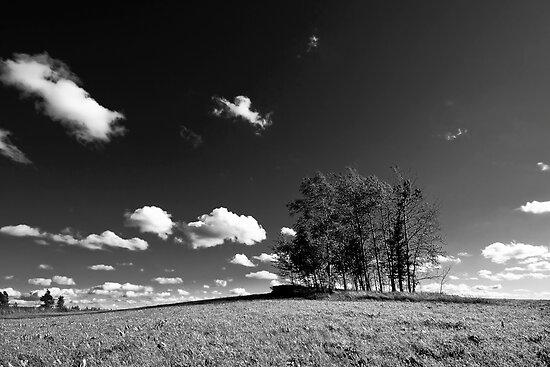 High sky by Csaba Jekkel