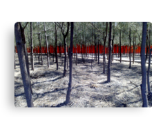 the red fence Canvas Print