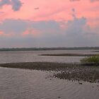 New Smyrna Inlet, Florida by saunders24