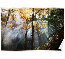 augural autumn aura Poster