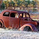 Resting and Rusting by Larry149