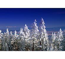 The Enchanting Snowfall Photographic Print