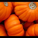 pumpkin 01 by Kittin