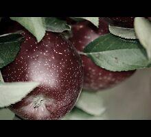 apple 03 by Kittin