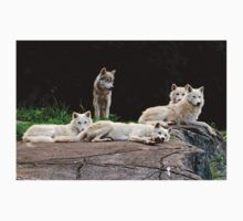 Arctic Wolf Pack T-Shirt