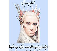 Thranduil, King of the Woodland Realm Photographic Print
