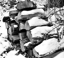 Pile of Logs by Lyndsay81