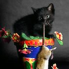 Rat Cat by billyboy