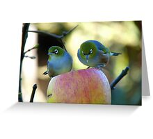 Eating Our Way ThroughThe Big Apple! - Wax-eye - NZ Greeting Card