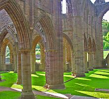 Tintern Abbey by caymanlogic