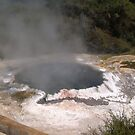 HOT sulfur pool - Rotarua by oiseau