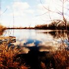 Duff Pond....Ortonized by trueblvr