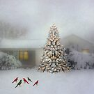 Snow Birds and Christmas Tree by Shyll