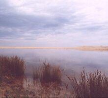 Saltwater Serenity by jensw61